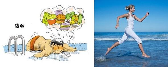 把运动减肥分成三个步骤